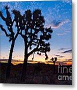 Josua Trees Beautifully Lit During Sunrise In Joshua Tree Nation Metal Print