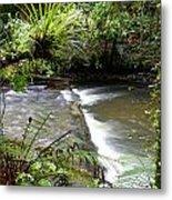 Jungle Stream  Metal Print