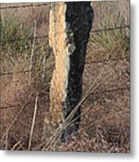 Kansas Country Limestone Fence Post Close Up With Grass Metal Print