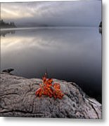 Lake In Autumn Sunrise Reflection Metal Print