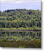 Lake Reflection Metal Print