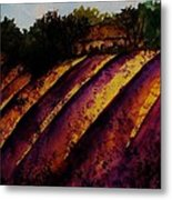 Lavender Fields Metal Print