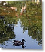 Living In Reflections Metal Print