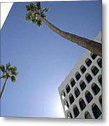 Looking Up In Beverly Hills Metal Print
