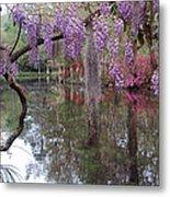 Magnolia Plantation Gardens Series II Metal Print