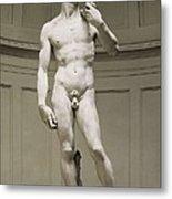 Michelangelo 1475-1564. David Metal Print by Everett