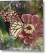 Monarch- Butterfly Mixed Media Photo Composite Metal Print