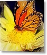Monarch Resting Sold Pastel Metal Print