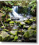 Mt Field National Park Metal Print