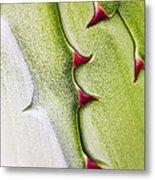 Natures Ornaments Metal Print