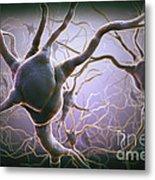 Neuron Metal Print