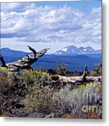 Newberry Lava Beds Metal Print