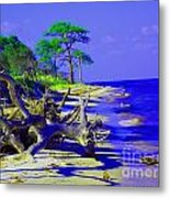 North Florida Beach Metal Print by Annette Allman
