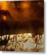 Orange Mist Metal Print