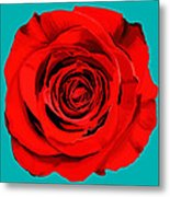 Painting Of Single Rose Metal Print