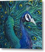 Peacock Metal Print by Willson Lau