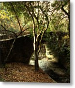 Pedestrian Bridge And Strawberry Creek  . 7d10152 Metal Print by Wingsdomain Art and Photography