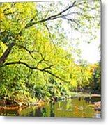 Pennsylvania Autumn Pennypack Creek Philadelphia Pennsylvania Metal Print