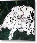 Playful Pups Metal Print