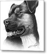 Portrait Of A Dog Metal Print