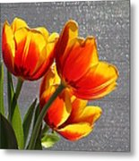 Red And Yellow Tulip's In A Window Metal Print by Robert D  Brozek