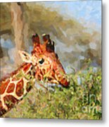 Reticulated Giraffe Kenya Metal Print