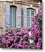 Saint Remy Windows Metal Print