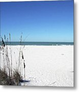 Seaoats On The Beach Metal Print