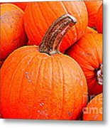 Small Pumpkins Metal Print