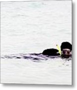 Snorkelling Sideways In The Lagoon Metal Print