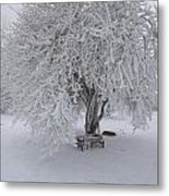 Snow And Ice Metal Print