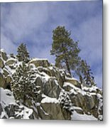 Snow Covered Cliffs And Trees II Metal Print