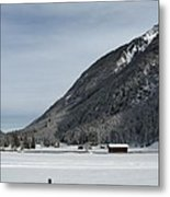 Snowy Meadow Metal Print