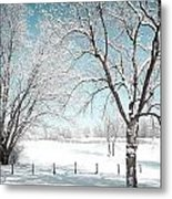 Snowy Trees On The Erie Canal Metal Print