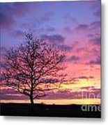 Spectacular Sunset Epsom Downs Surrey Uk Metal Print