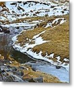 Spring Creek Metal Print
