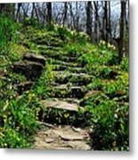 Spring In Your Step Metal Print