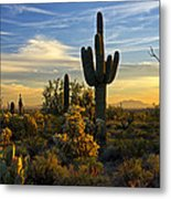 The Golden Southwest  Metal Print