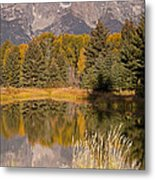 The Grand Tetons Schwabacher Landing Grand Teton National Park Metal Print