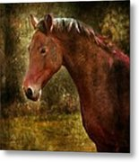 The Horse Portrait Metal Print
