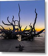 The Reach Metal Print