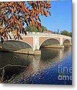 The River Thames At Hampton Court London Metal Print