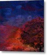 Through The Mist Metal Print by Jack Zulli