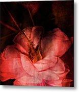 Time Of Roses Metal Print