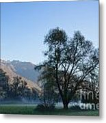 Tree And Mountain Metal Print