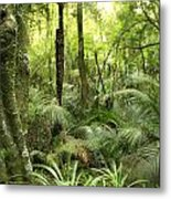 Tropical Jungle Metal Print by Les Cunliffe