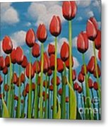 Tulip Festival Metal Print by Holly Donohoe