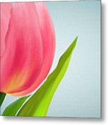 Tulip I Metal Print