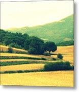 Tuscany  Metal Print
