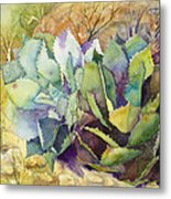 Two Fat Agaves - 140 Lb Metal Print